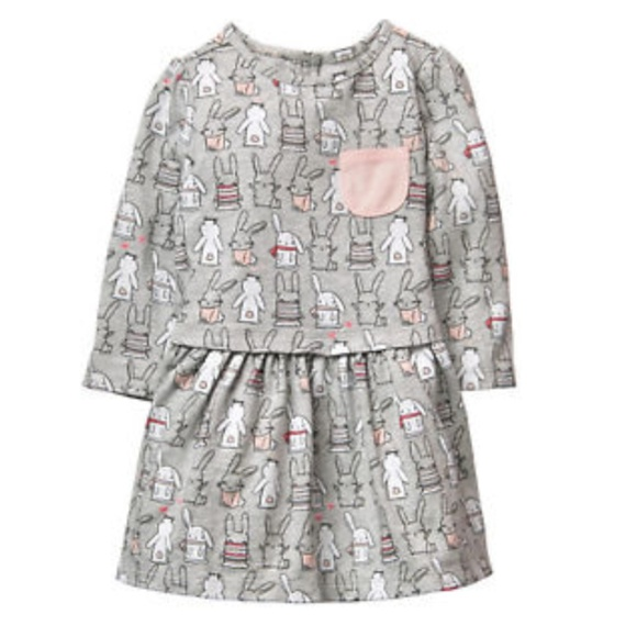 Gymboree Other - *5 FOR $30* Gymboree || Bunny Rabbit Pocket Dress